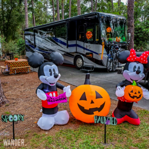 Read more about the article Disney's Fort Wilderness