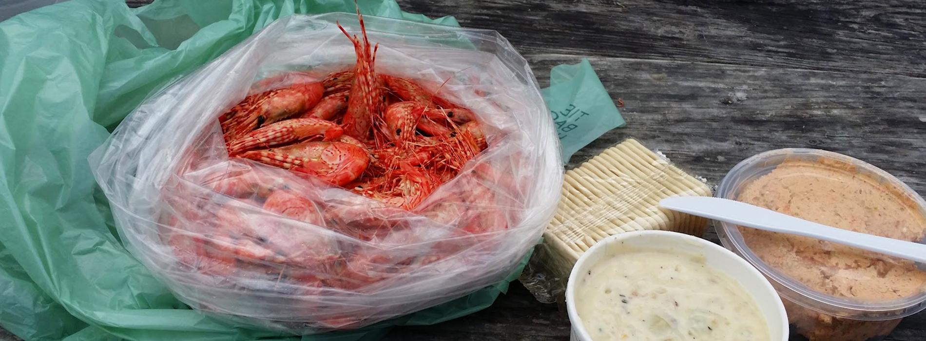 DTW-Header-Shrimp